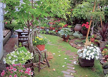庭が広いとこんなガーデニングもできちゃう.png