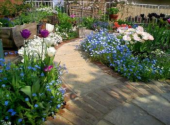 庭に咲く綺麗な花々.png