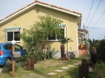 観葉植物と黄色い外壁がかわいい印象を残す.png